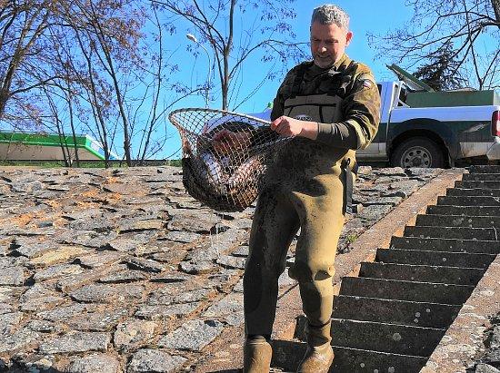Rybáři vysadili do řeky vBlansku aokolí pstruhy