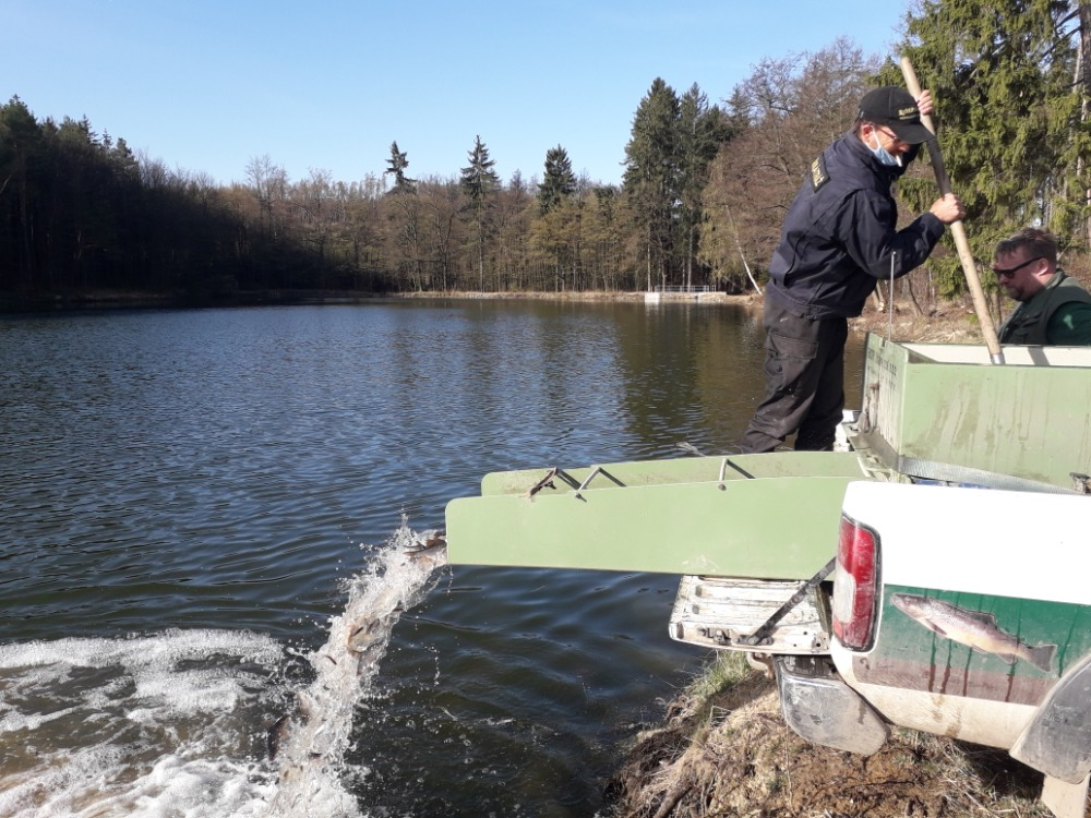 Rybník v Podomí po revitalizaci ožívá