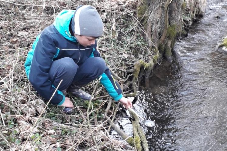 Chovné potoky v Moravském Krasu a okolí jsou opět plné pstružího potěru